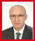 Prof. Dr. Fethi GEDİKLİ <br>HUKUK EĞİTİMİ GÖRMEMİŞ HÂKİMLER, ADALET DAĞITABİLİR Mİ?